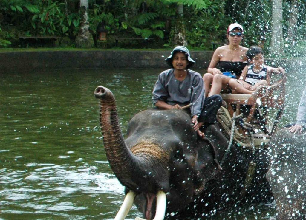 elephant_riding2