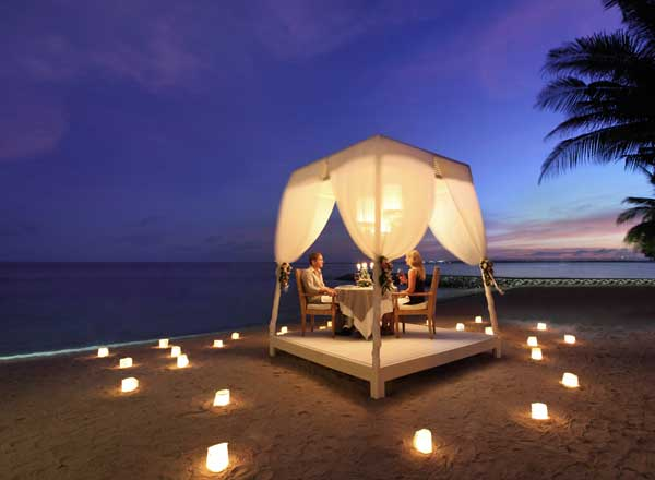 purisantrian_dinning romantic